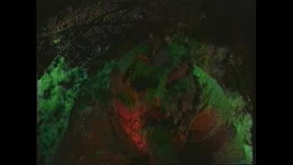 Аквариум - Скорбец