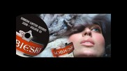 Sobieski Winter Session 2008 - Track 4