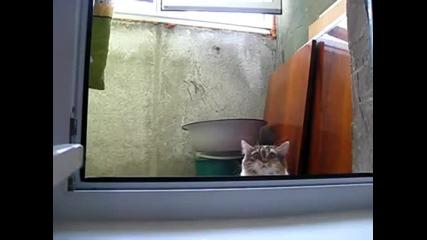 Не знаете кой ви гледа