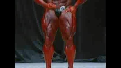 Jay Cutler 2006