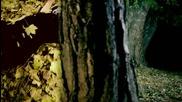 Hugo - Danas - Official Video - 2011