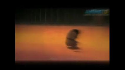 Naruhina - Lies - Evanescence