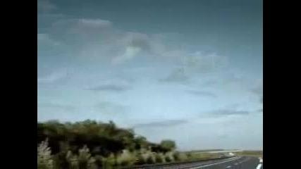 Как животните пресичат магистралатa