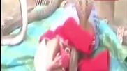 Кралски кобри чиято отрова може да убие Слон охраняват бебе докато спи
