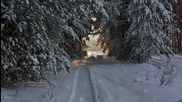 Winter Cold - Fiona Joy Hawkins