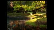 Rudiger Oppermann - Emerald Forest