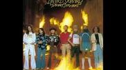 Lynyrd Skynyrd - One More Time