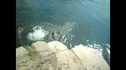 скокливите ведрарци 2