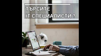 Jobs Help Bg - Безплатни обяви за работа - jobshelp-bg.com