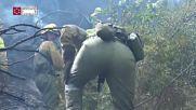 Spain: Firefighters battle huge blaze in Castellon province