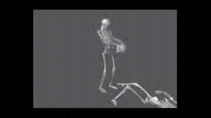 Скелет !!