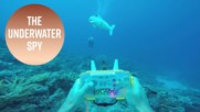 The mesmerizing underwater robot spy