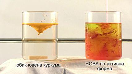 Революционно нова хранителна добавка с куркумин от Solgar