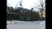 Габрово се възстановява след урагана, приемат молби за еднократна помощ на пострадалите