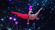 Кристиан Стойнев в Америка търси таланти 2014.. балансиране с танцуващо кученце
