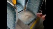 Как изглеждат автобусите в Бг ?????