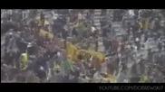 Botev Plovdiv - Yellow Black Till Die - Hd