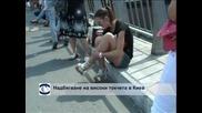 Състезание на бягане с високи токчета в Киев