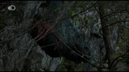 Man vs. Wild - Alaska - Bear Trapped