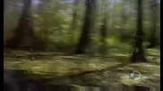 Човекът срещу природата - Сезон 5 епизод 2(част 1)