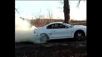 Ford Mustang Lud Burnout