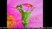Happy Spring Season Animated Wishes Greetings Sms Quotes E-card Wallpapers Whatsapp video