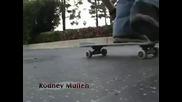 The King of Skate Tony Hawk