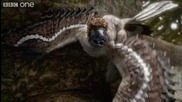 Планетата На Динозаврите - Микрораптор!