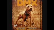 Dmx - My Life !! (*превод*)