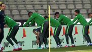 Belgium: Saudi Arabian football team prepares for Belgium friendly