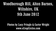 Latest Uk crop circles 2012 - Woodborough Hill, Alton Barnes, Wiltshire 9 June
