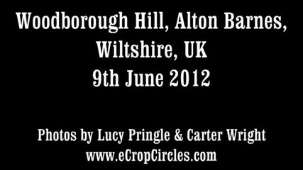 Latest Uk crop circles 2012 - Woodborough Hill, Alton Barnes, Wiltshire 9 June