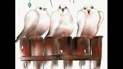 "Кафене ""трите гълъба""- / превод / - Жо Дасен"
