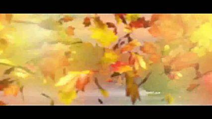 Есента пристига, скъпа моя – Оливер Драгоевич (превод)