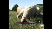 Когато Бях Овчарче - Караоке