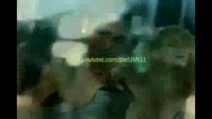 The Pussycat Dolls - Hush Hush (official Music Video)