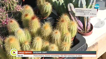 Украинка отглежда 100 000 кактуса у нас