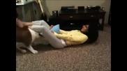Най разгоненото куче - смях