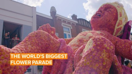 This Dutch parade takes flower power to the next level