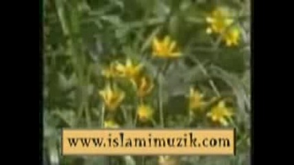 Mahmut Sevket Bayram - Ask N Ile As Klar - Video Klip Izle S