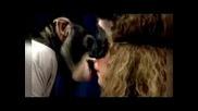 Тест за целувки - Голям смях!
