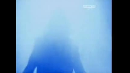 Night Of Champions 2010 Intro