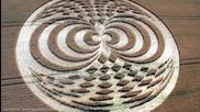Тайната на мистериозните кръгове