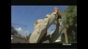Американски Танк Размазва Цивилна Иракска Кола!