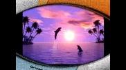 Delfincheta Lubimite Mi Jivotni