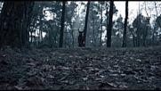 Shireen - Umai / official video