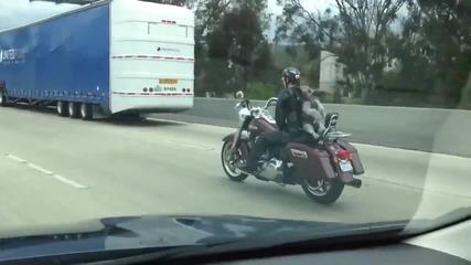 Куче се вози по магистралата!