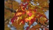 Поль Де Сенневиль - Осенний вальс!