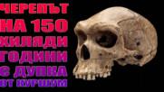 Черепът на 150 хиляди години с дупка от куршум !