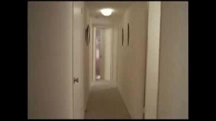Edward Scissorhands:Whats Inside